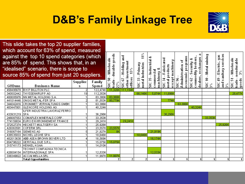 D&B's Family Linkage Tree This slide takes the top 20 supplier families, which account for 63% of spend, measured against the top 10 spend categories