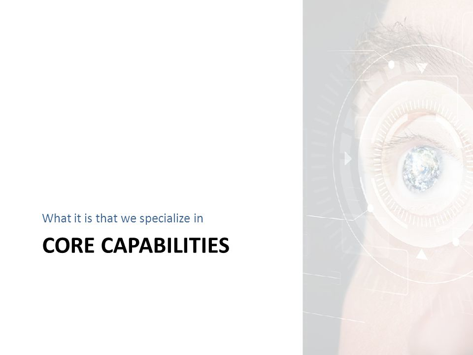 CORE CAPABILITIES What it is that we specialize in
