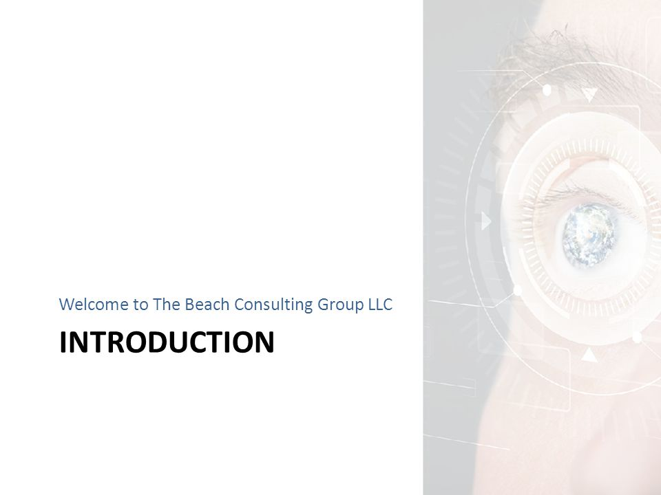 INTRODUCTION Welcome to The Beach Consulting Group LLC