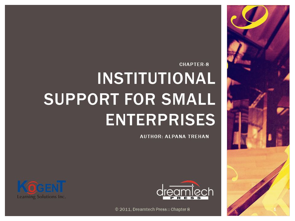 INSTITUTIONAL SUPPORT FOR SMALL ENTERPRISES AUTHOR: ALPANA TREHAN CHAPTER-8 © 2011, Dreamtech Press :: Chapter 8 1