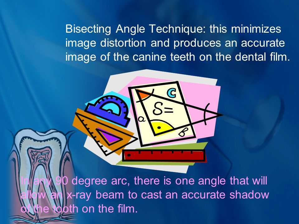 Bisecting Angle Technique: this minimizes image distortion and produces an accurate image of the canine teeth on the dental film. In any 90 degree arc