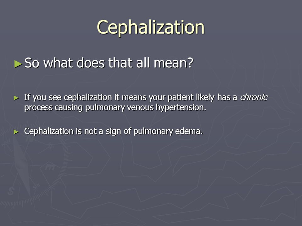 Cephalization ► So what does that all mean.