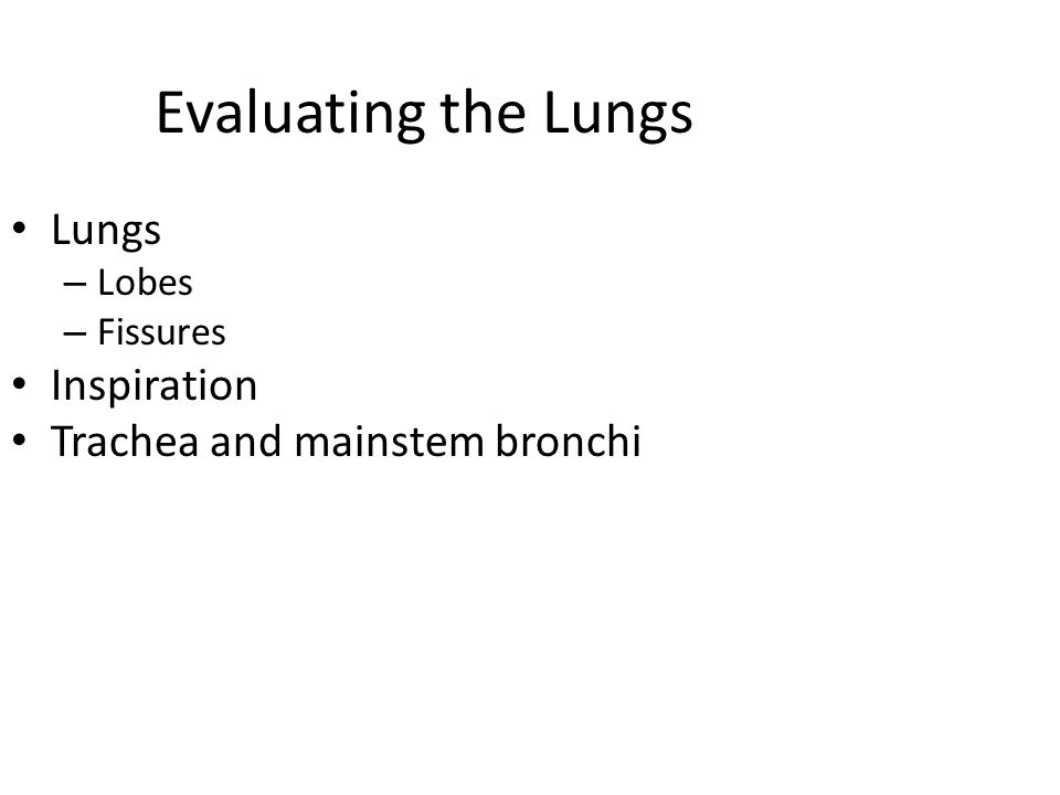 Evaluating the Lungs Lungs – Lobes – Fissures Inspiration Trachea and mainstem bronchi