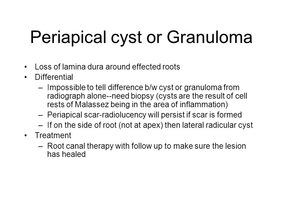 Periapical cyst or Granuloma Loss of lamina dura around effected roots Differential –Impossible to tell difference b/w cyst or granuloma from radiograph alone--need biopsy (cysts are the result of cell rests of Malassez being in the area of inflammation) –Periapical scar-radiolucency will persist if scar is formed –If on the side of root (not at apex) then lateral radicular cyst Treatment –Root canal therapy with follow up to make sure the lesion has healed