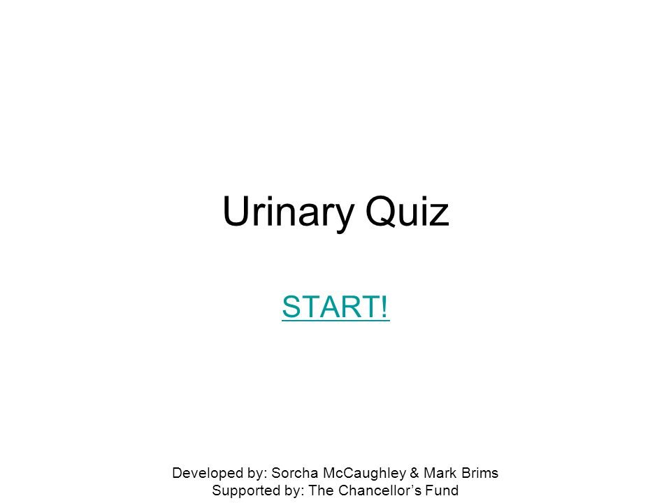 Urinary Quiz START! Developed by: Sorcha McCaughley & Mark Brims Supported by: The Chancellor's Fund