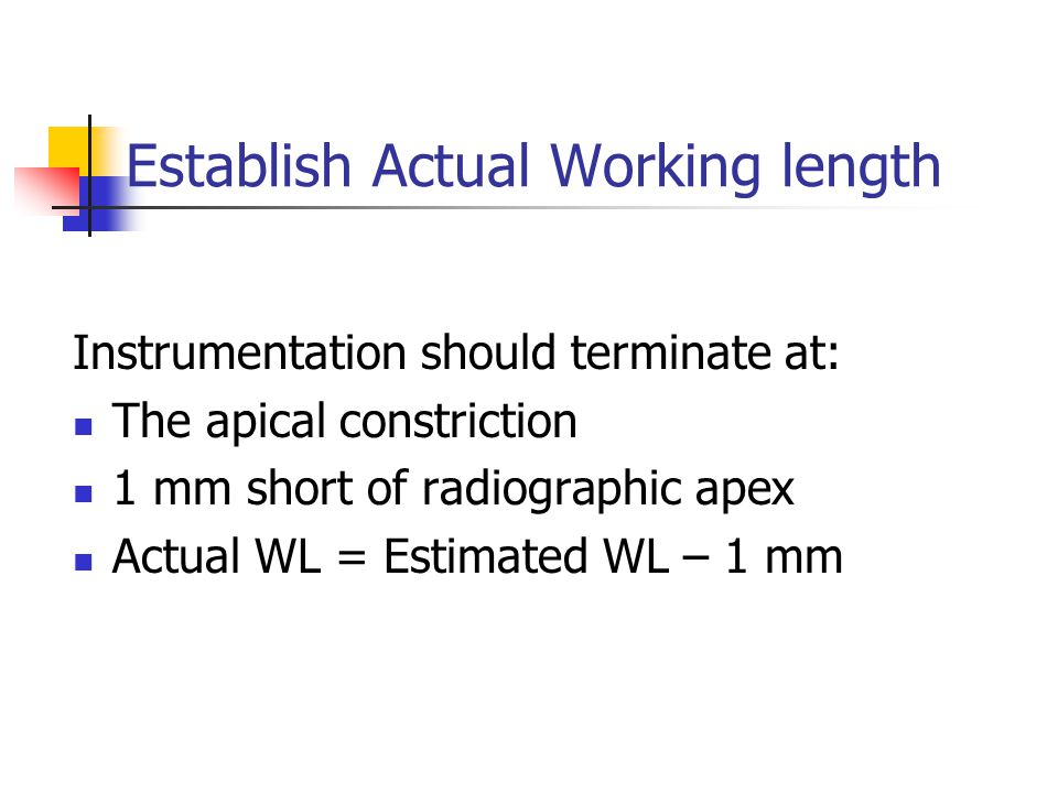 Establish Actual Working length Instrumentation should terminate at: The apical constriction 1 mm short of radiographic apex Actual WL = Estimated WL – 1 mm