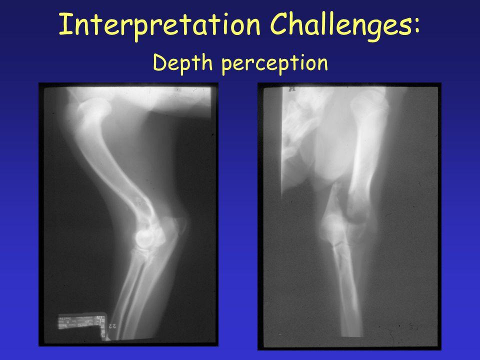 Interpretation Challenges: Depth perception