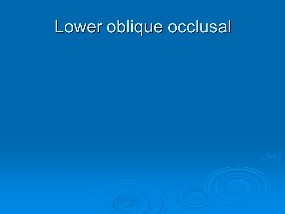 Lower oblique occlusal
