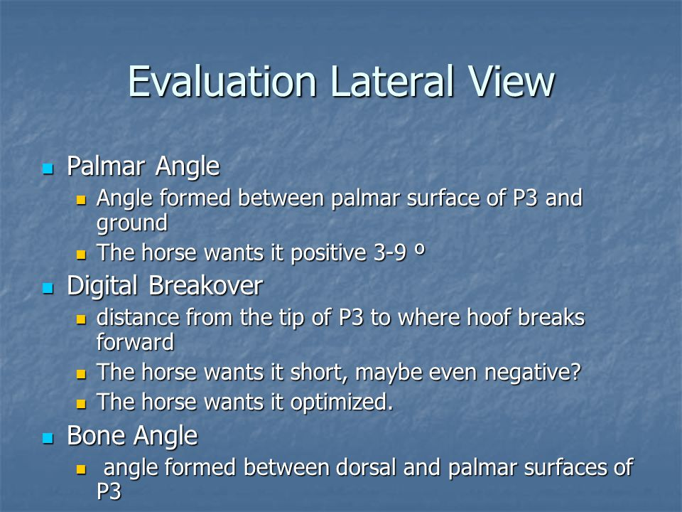 Evaluation Lateral View Palmar Angle Palmar Angle Angle formed between palmar surface of P3 and ground Angle formed between palmar surface of P3 and g