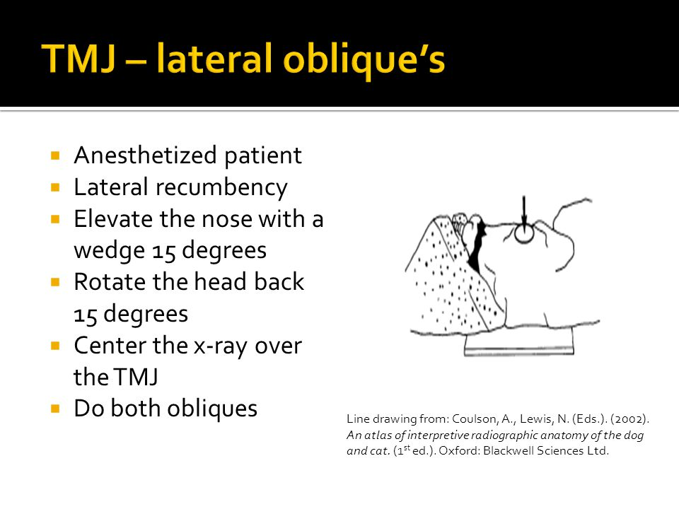  Anesthetized patient  Lateral recumbency  Elevate the nose with a wedge 15 degrees  Rotate the head back 15 degrees  Center the x-ray over the TMJ  Do both obliques Line drawing from: Coulson, A., Lewis, N.