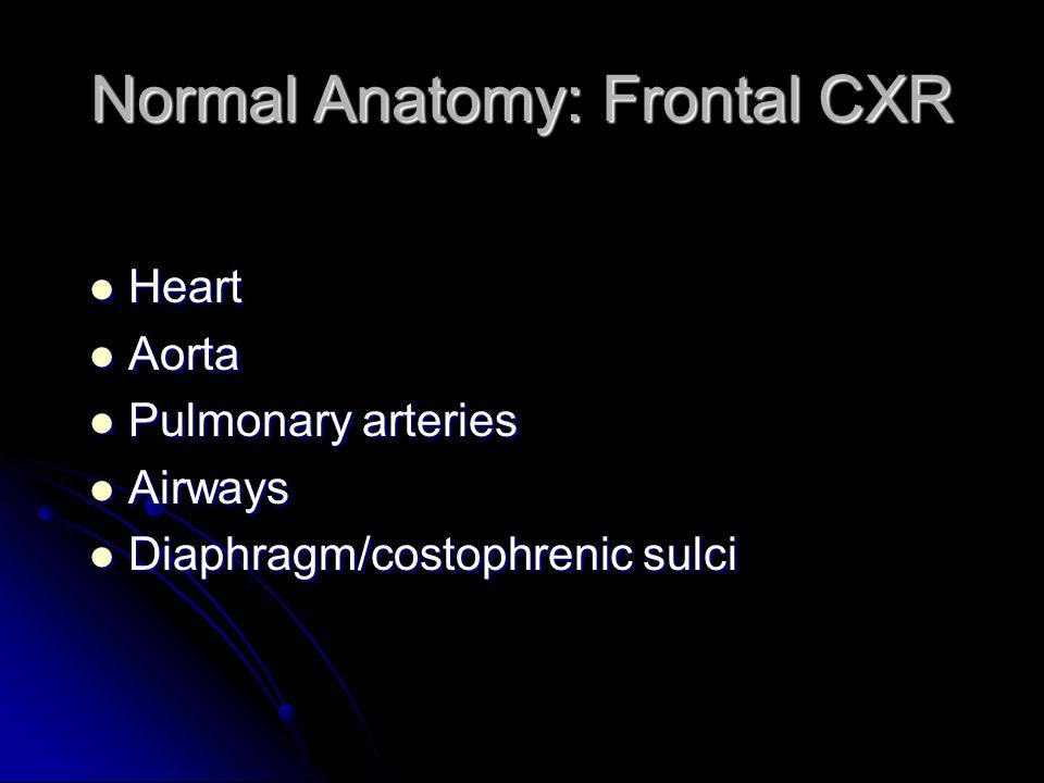 Normal Anatomy: Frontal CXR Heart Heart Aorta Aorta Pulmonary arteries Pulmonary arteries Airways Airways Diaphragm/costophrenic sulci Diaphragm/costo