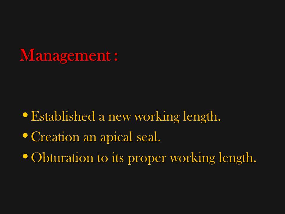 Management : Established a new working length.Established a new working length.