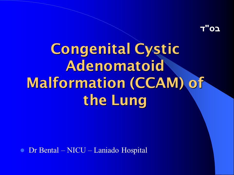Congenital Cystic Adenomatoid Malformation (CCAM) of the Lung Dr Bental – NICU – Laniado Hospital בס ד