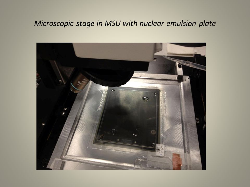 Microscopic stage in MSU with nuclear emulsion plate