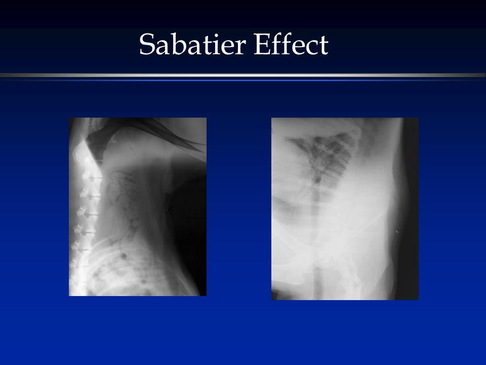 Sabatier Effect