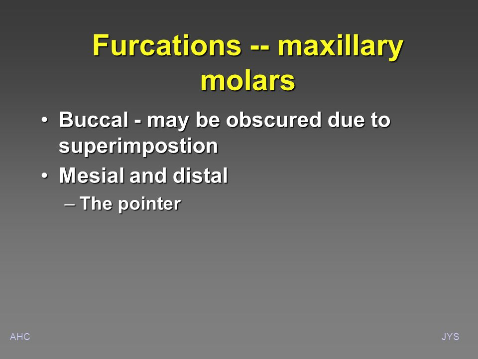 AHCJYS Furcations -- maxillary molars Buccal - may be obscured due to superimpostionBuccal - may be obscured due to superimpostion Mesial and distalMesial and distal –The pointer