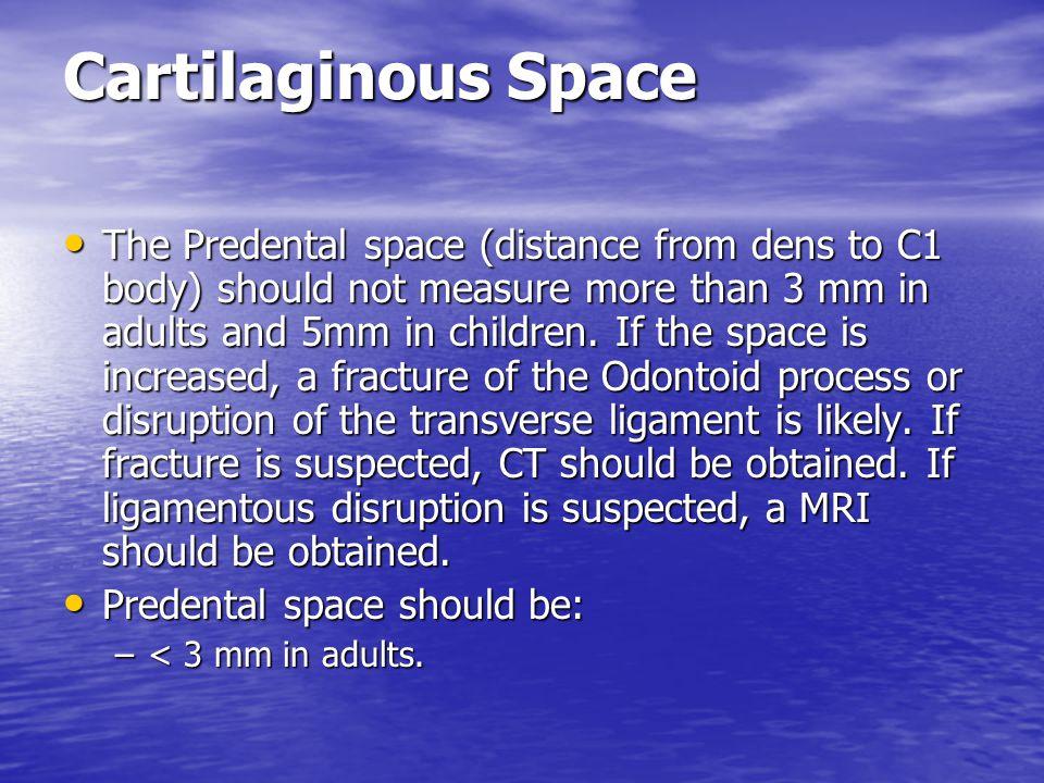 Predental space