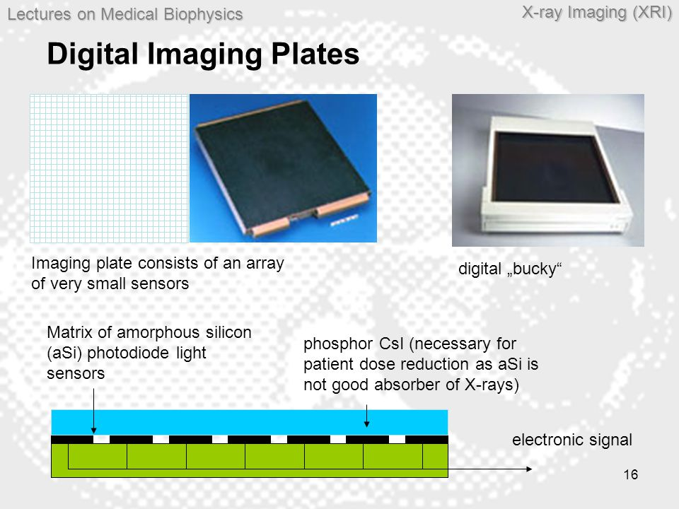 Lectures on MedicalBiophysics Lectures on Medical Biophysics X-ray Imaging (XRI) 16 Digital Imaging Plates Matrix of amorphous silicon (aSi) photodiod