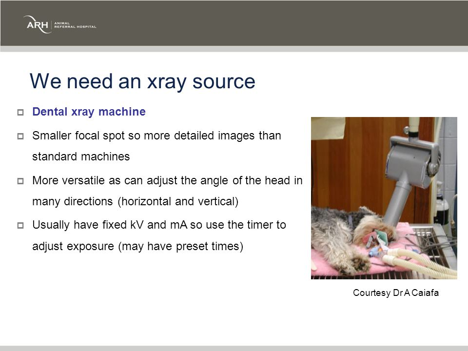 We need an xray source  Dental xray machine  Smaller focal spot so more detailed images than standard machines  More versatile as can adjust the angle of the head in many directions (horizontal and vertical)  Usually have fixed kV and mA so use the timer to adjust exposure (may have preset times) Courtesy Dr A Caiafa