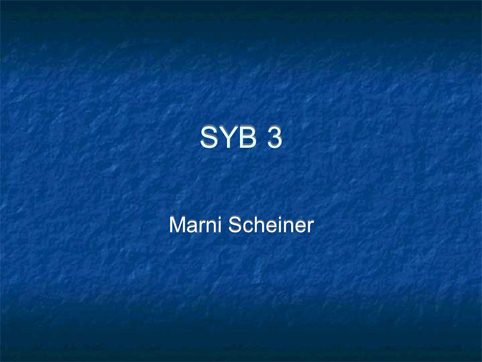 SYB 3 Marni Scheiner