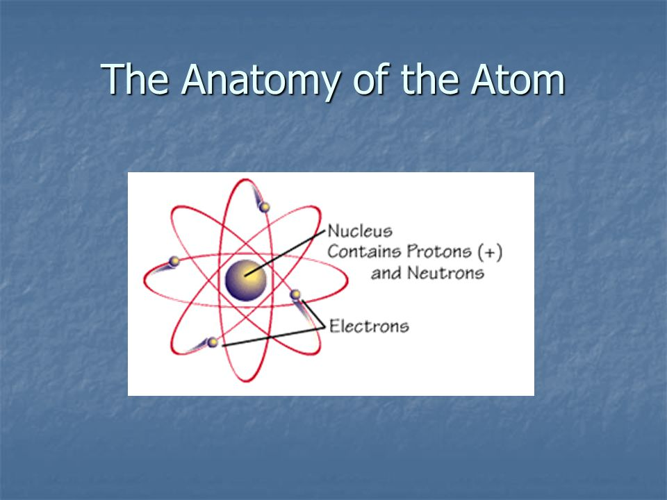 The Anatomy of the Atom