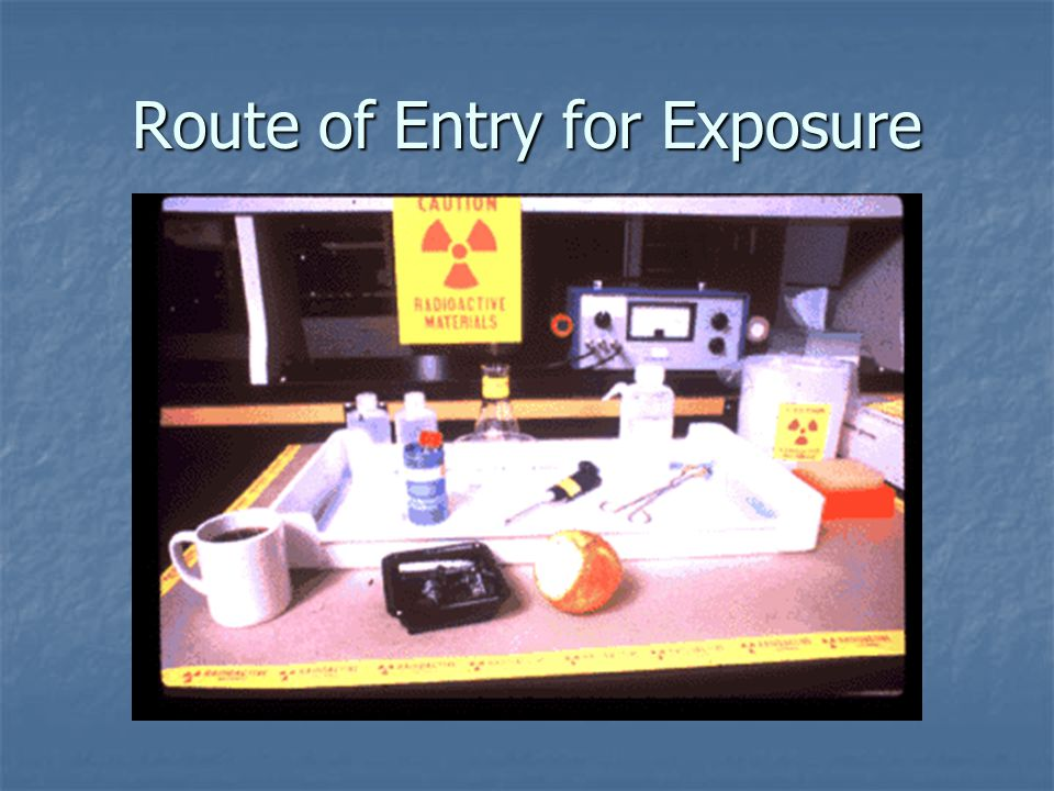 Route of Entry for Exposure