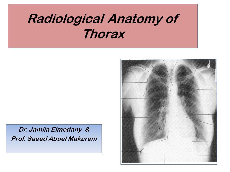 Radiological Anatomy of Thorax Dr. Jamila Elmedany & Prof. Saeed Abuel Makarem