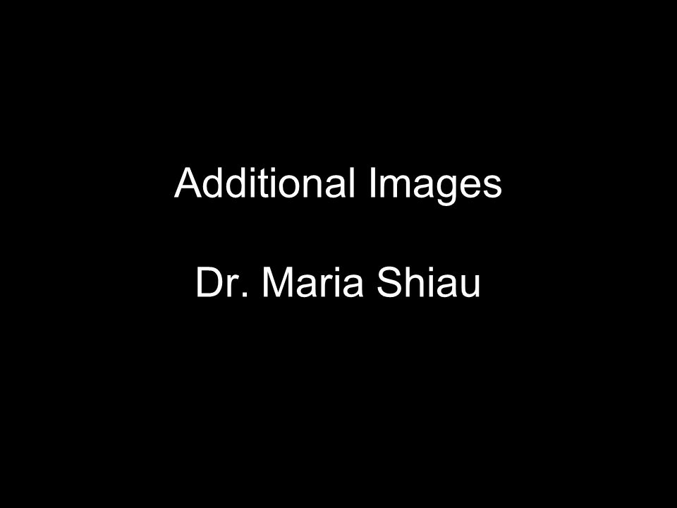 Additional Images Dr. Maria Shiau