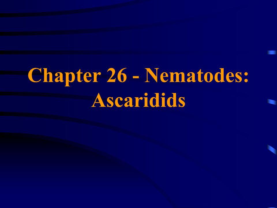 Chapter 26 - Nematodes: Ascaridids