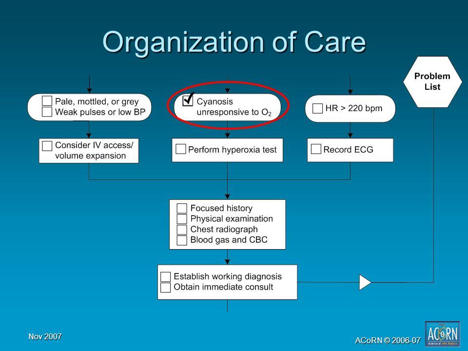 Nov 2007 ACoRN © 2006-07 Organization of Care