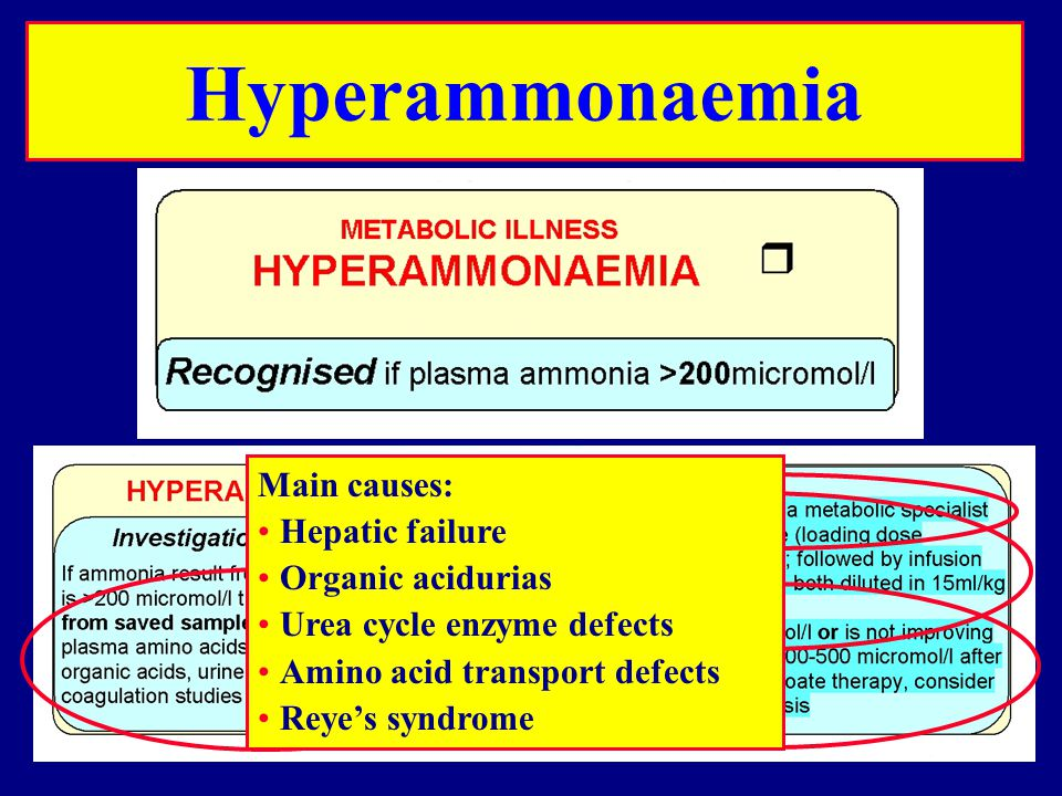 Hyperammonaemia Main causes: Hepatic failure Organic acidurias Urea cycle enzyme defects Amino acid transport defects Reye's syndrome