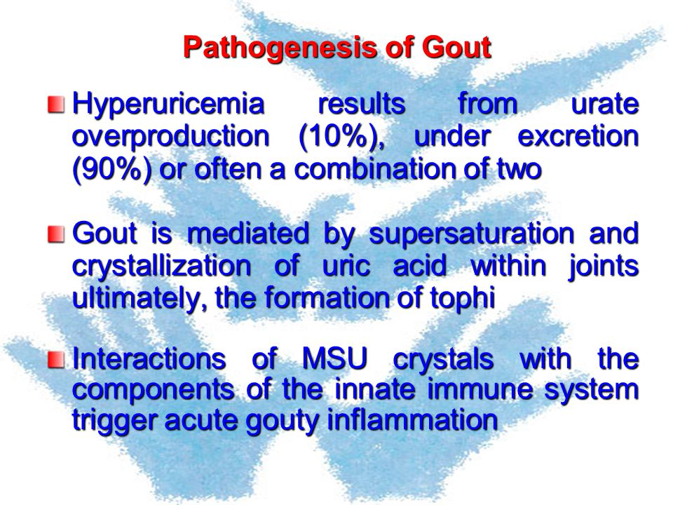 Pathogenesis of Gout Hyperuricemia results from urate overproduction (10%), under excretion (90%) or often a combination of two Gout is mediated by su