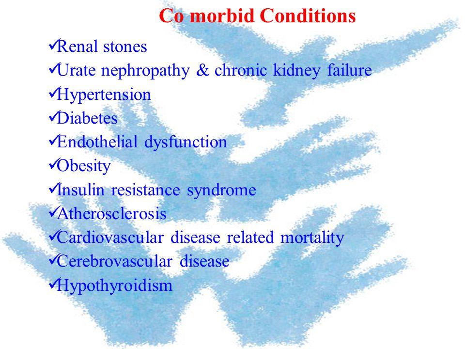 Renal stones Urate nephropathy & chronic kidney failure Hypertension Diabetes Endothelial dysfunction Obesity Insulin resistance syndrome Atherosclero