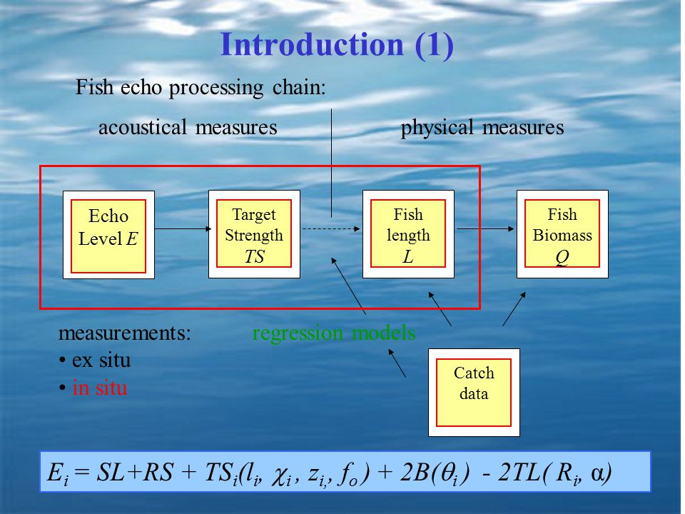 3 Introduction (1) Echo Level E Target Strength TS Fish length L Fish Biomass Q acoustical measuresphysical measures Catch data Fish echo processing chain: regression models measurements: ex situ in situ E i = SL+RS + TS i (l i,  i, z i,, f o ) + 2B(  i ) - 2TL( R i, α)