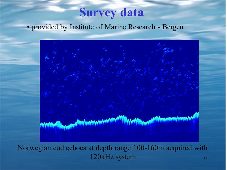33 Survey data provided by Institute of Marine Research - Bergen Norwegian cod echoes at depth range 100-160m acquired with 120kHz system