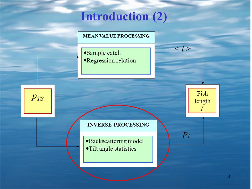 4 Introduction (2)  Backscattering model  Tilt angle statistics INVERSE PROCESSING  Sample catch  Regression relation MEAN VALUE PROCESSING p TS Fish length L plpl