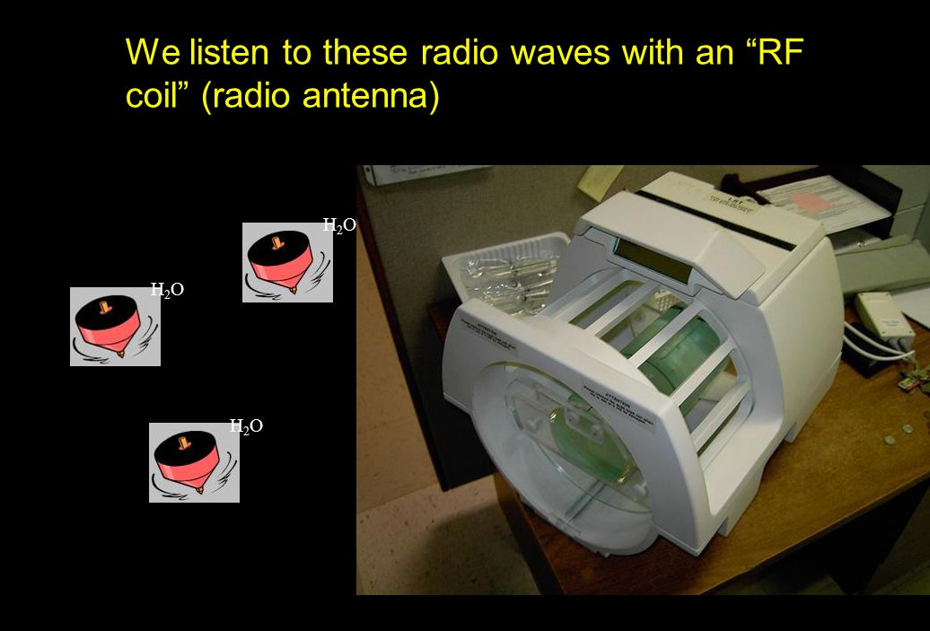 "We listen to these radio waves with an ""RF coil"" (radio antenna) H2OH2O H2OH2O H2OH2O"