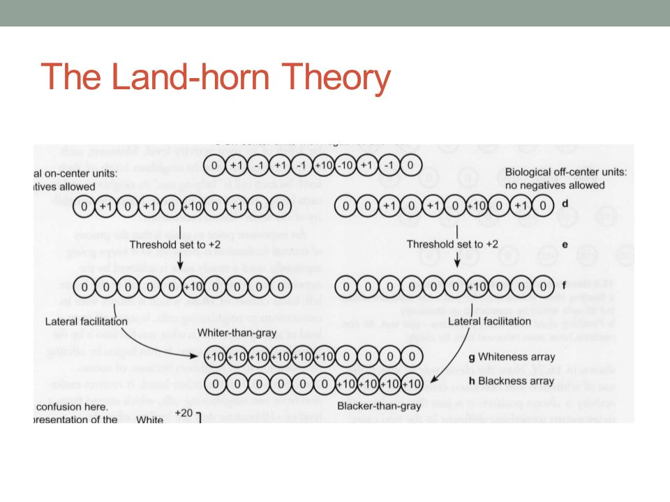 The Land-horn Theory