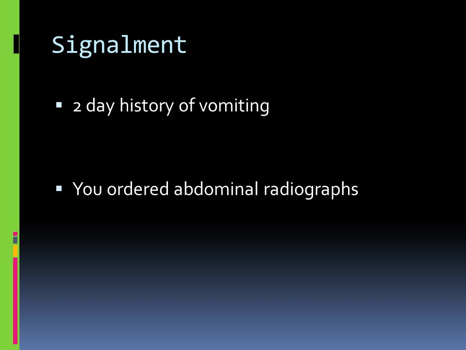 Signalment  2 day history of vomiting  You ordered abdominal radiographs