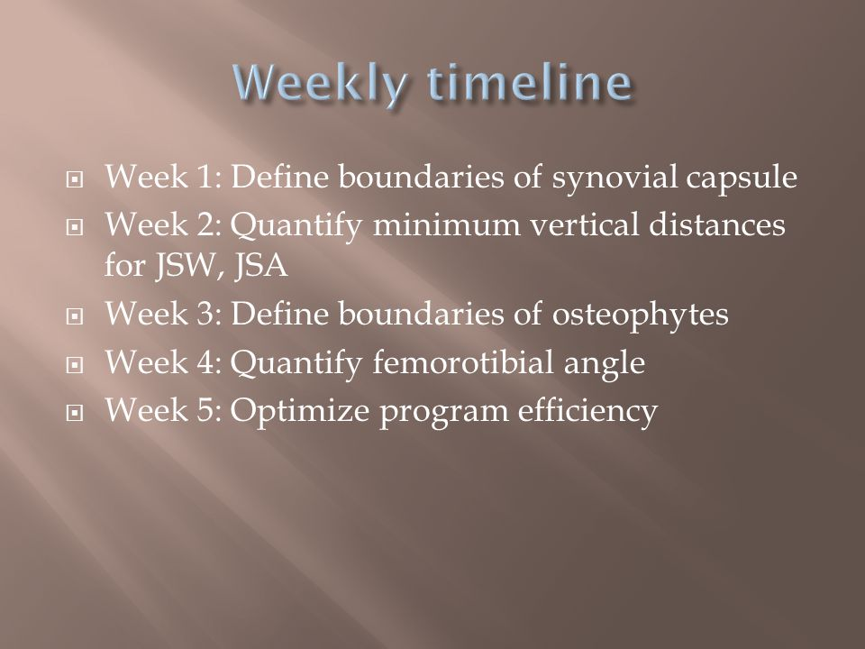  Week 1: Define boundaries of synovial capsule  Week 2: Quantify minimum vertical distances for JSW, JSA  Week 3: Define boundaries of osteophytes  Week 4: Quantify femorotibial angle  Week 5: Optimize program efficiency