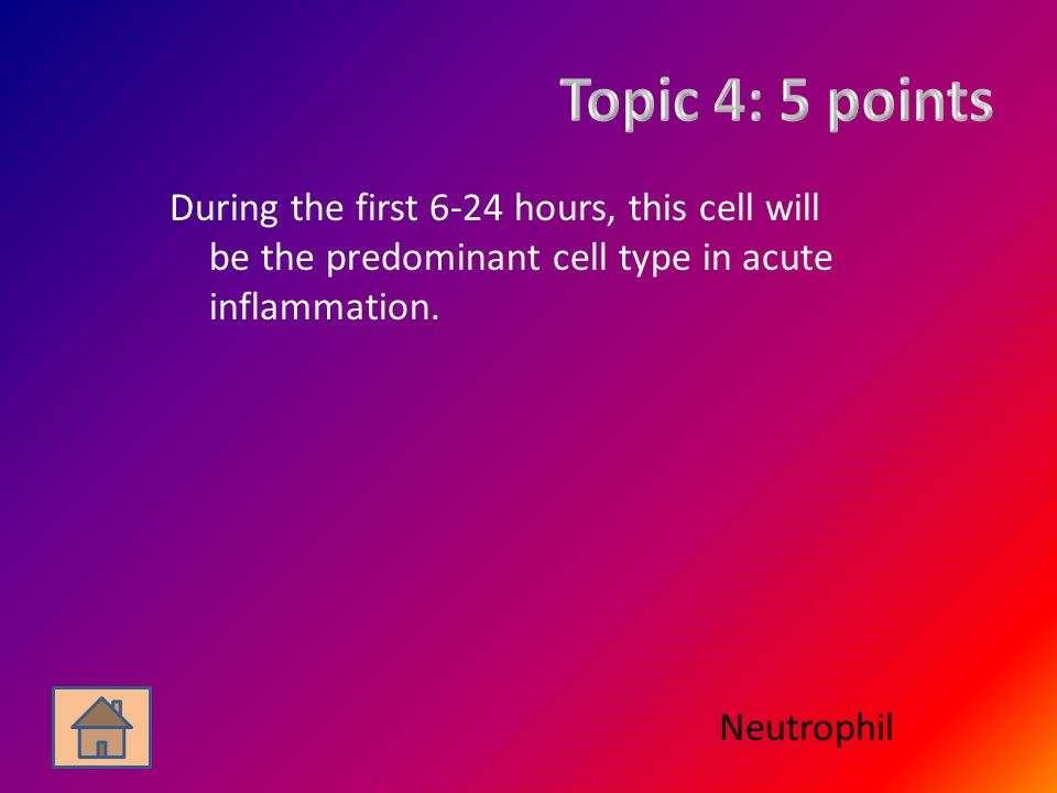 During the first 6-24 hours, this cell will be the predominant cell type in acute inflammation.