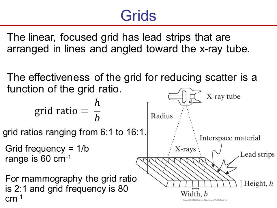 Grids The linear, focused grid has lead strips that are arranged in lines and angled toward the x-ray tube. The effectiveness of the grid for reducing