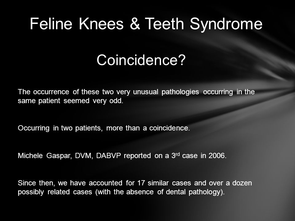 Feline Knees & Teeth Syndrome Coincidence? The occurrence of these two very unusual pathologies occurring in the same patient seemed very odd. Occurri