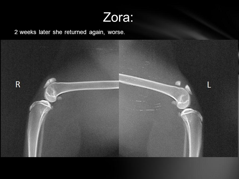 Zora: 2 weeks later she returned again, worse.
