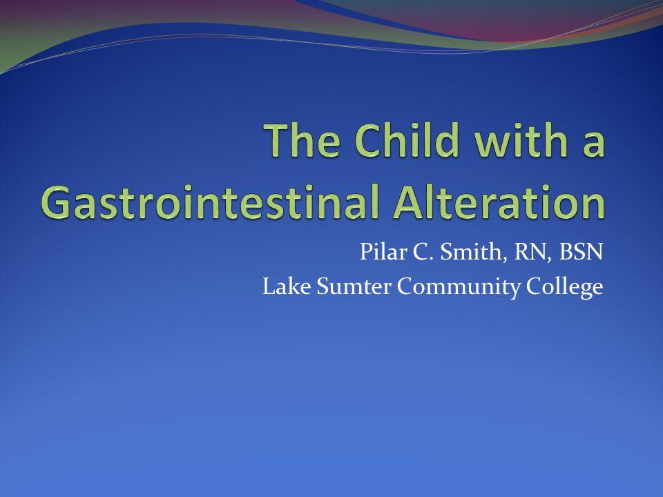 Pilar C. Smith, RN, BSN Lake Sumter Community College