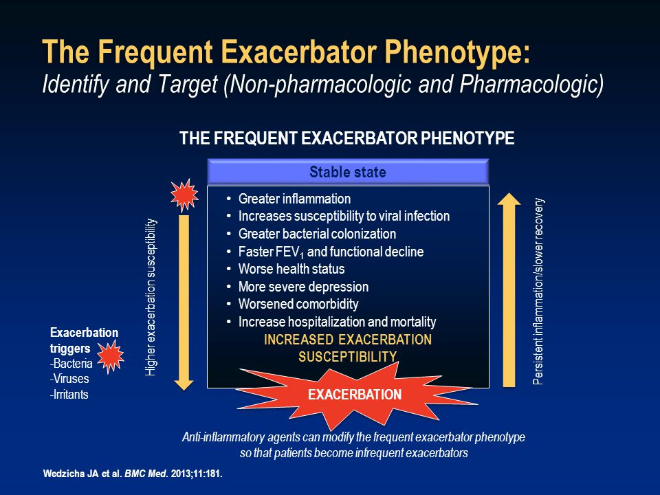 Stable state THE FREQUENT EXACERBATOR PHENOTYPE Higher exacerbation susceptibility Persistent inflammation/slower recovery Greater inflammation Increa
