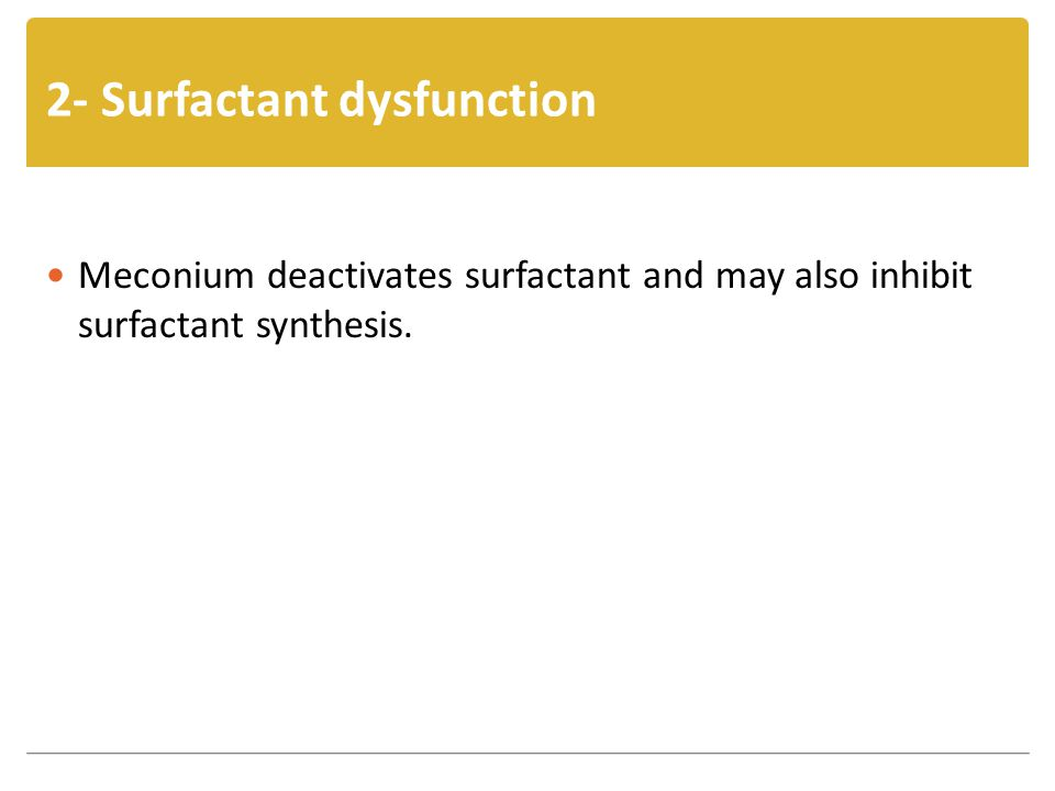 2- Surfactant dysfunction Meconium deactivates surfactant and may also inhibit surfactant synthesis.