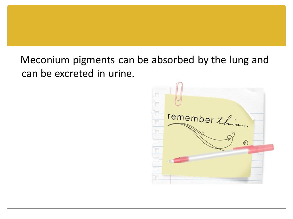 Meconium pigments can be absorbed by the lung and can be excreted in urine.