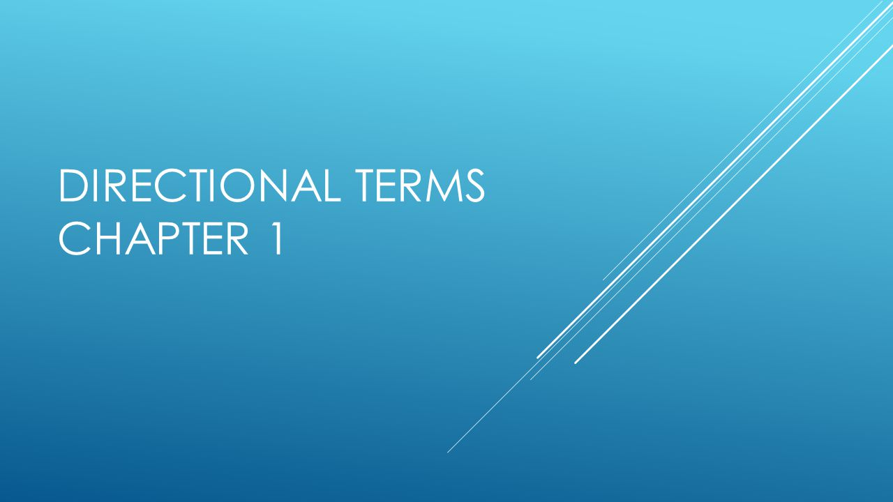 DIRECTIONAL TERMS CHAPTER 1