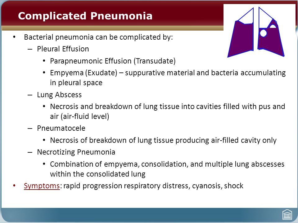 Complicated Pneumonia Bacterial pneumonia can be complicated by: – Pleural Effusion Parapneumonic Effusion (Transudate) Empyema (Exudate) – suppurative material and bacteria accumulating in pleural space – Lung Abscess Necrosis and breakdown of lung tissue into cavities filled with pus and air (air-fluid level) – Pneumatocele Necrosis of breakdown of lung tissue producing air-filled cavity only – Necrotizing Pneumonia Combination of empyema, consolidation, and multiple lung abscesses within the consolidated lung Symptoms: rapid progression respiratory distress, cyanosis, shock
